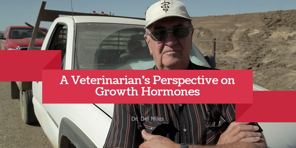 A Veterinarian's Perspective on Growth Hormones